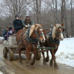 HurryHill Farm Horse drawn wagon rides